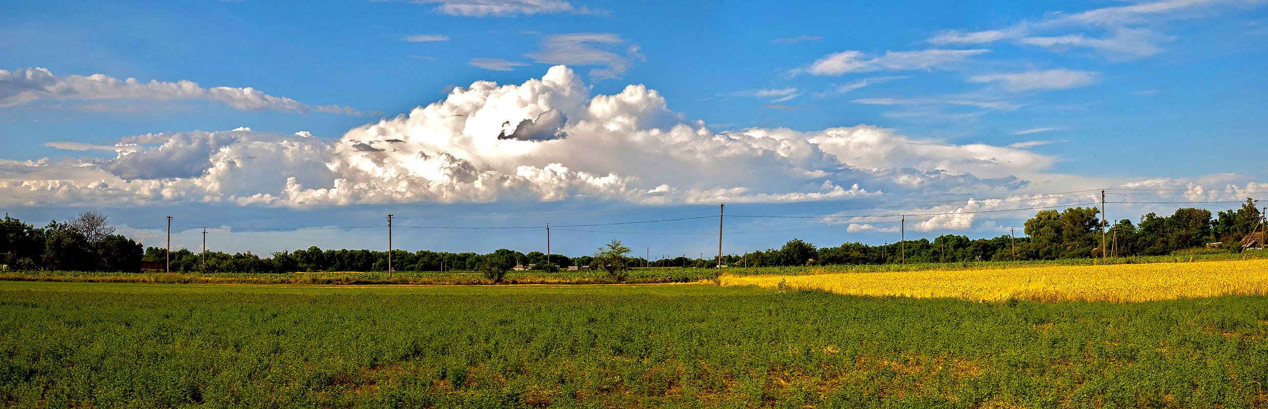 Лето в Могилёве.