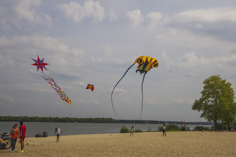 День города:  Фестиваль воздушных змеев