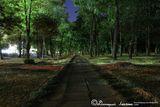 Вечерний парк им. 40-летия освобождения Днепра