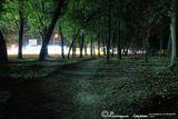 Парк у шоссе (парк им. 40-летия освобождения Днепра)