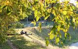 В парке Гагарина