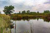 Рукотворное озеро, село Могилёв