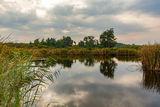 Рукотворное озеро, Могилёв