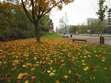 По городу гуляет осень