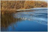 Лед на исходе февраля
