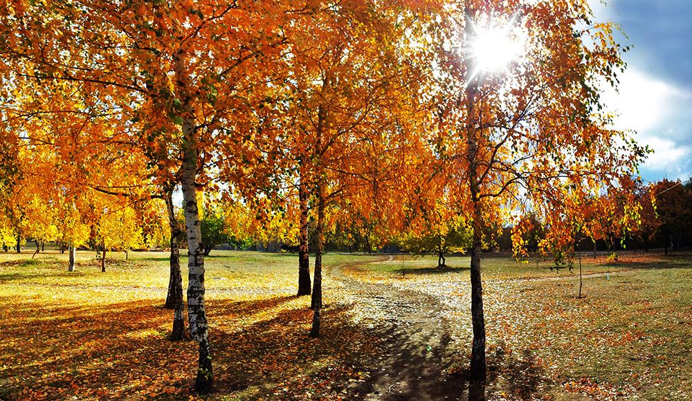 Осень на Красном Камне