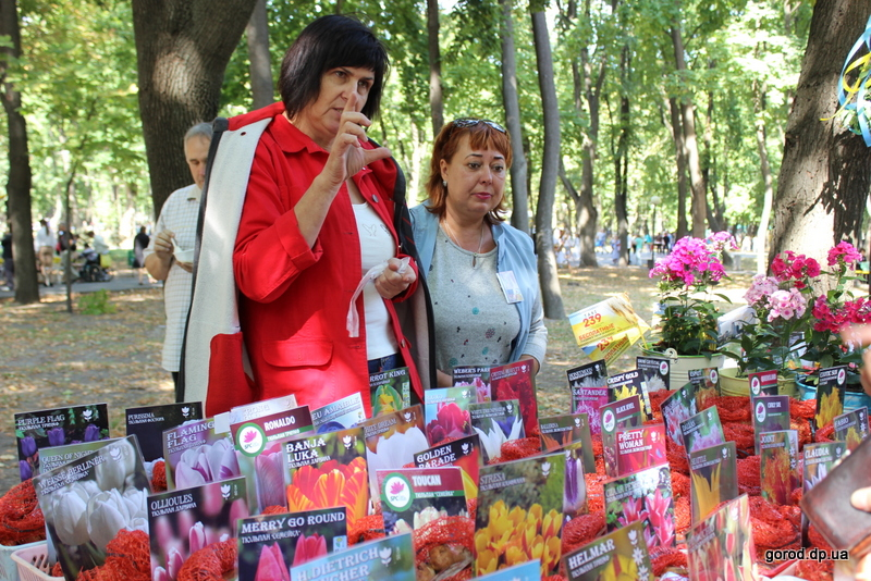 День города: Днепропетровск фестивалит и бьет рекорды