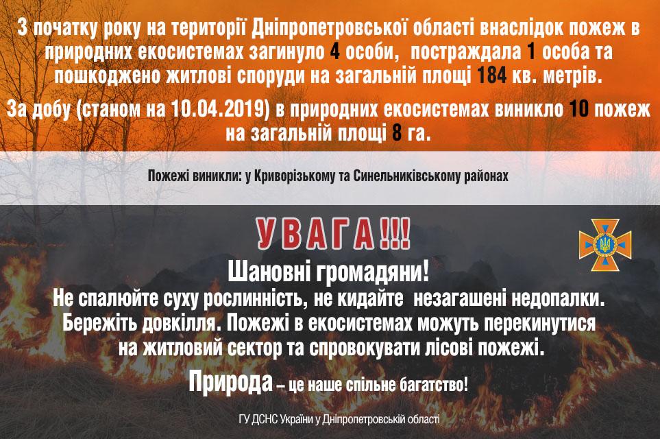 С начала года на Днепропетровщине из-за пожаров в природных экосистемах 4 человека погибли, 1 пострадал