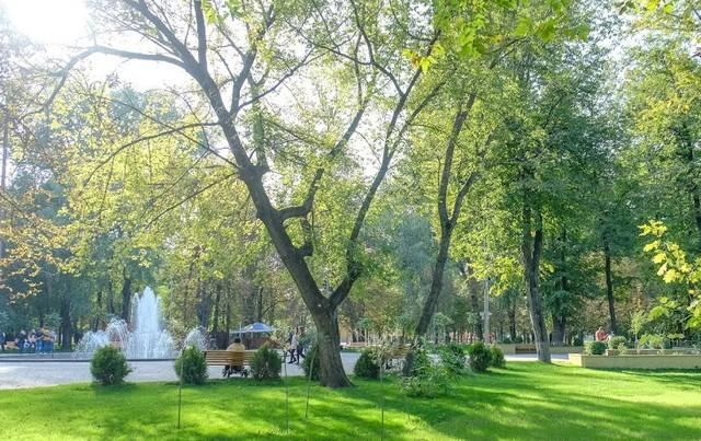 Каменский парк - зеленый и уютный
