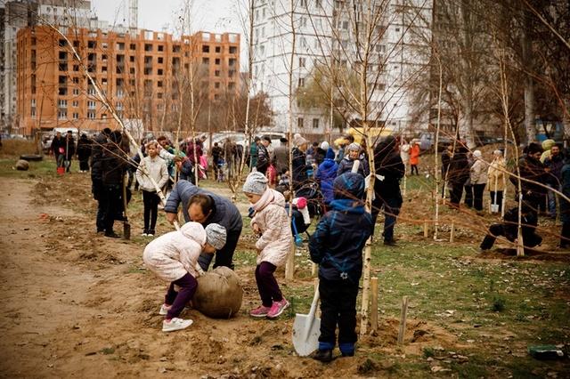 на жилом массиве Левобережный-3 вырос первый в городе Березовый сад