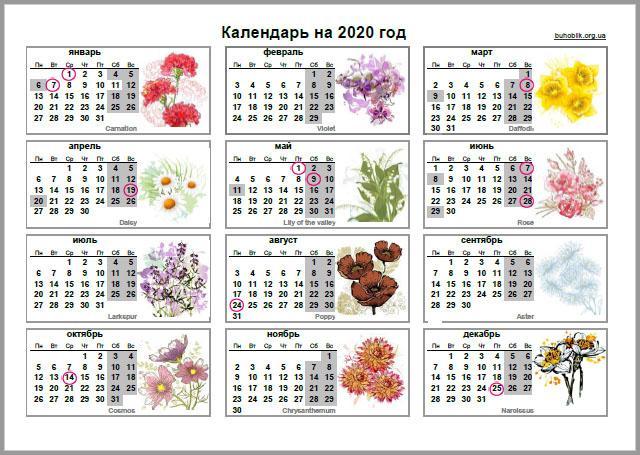 Фото: buhoblik.org.ua