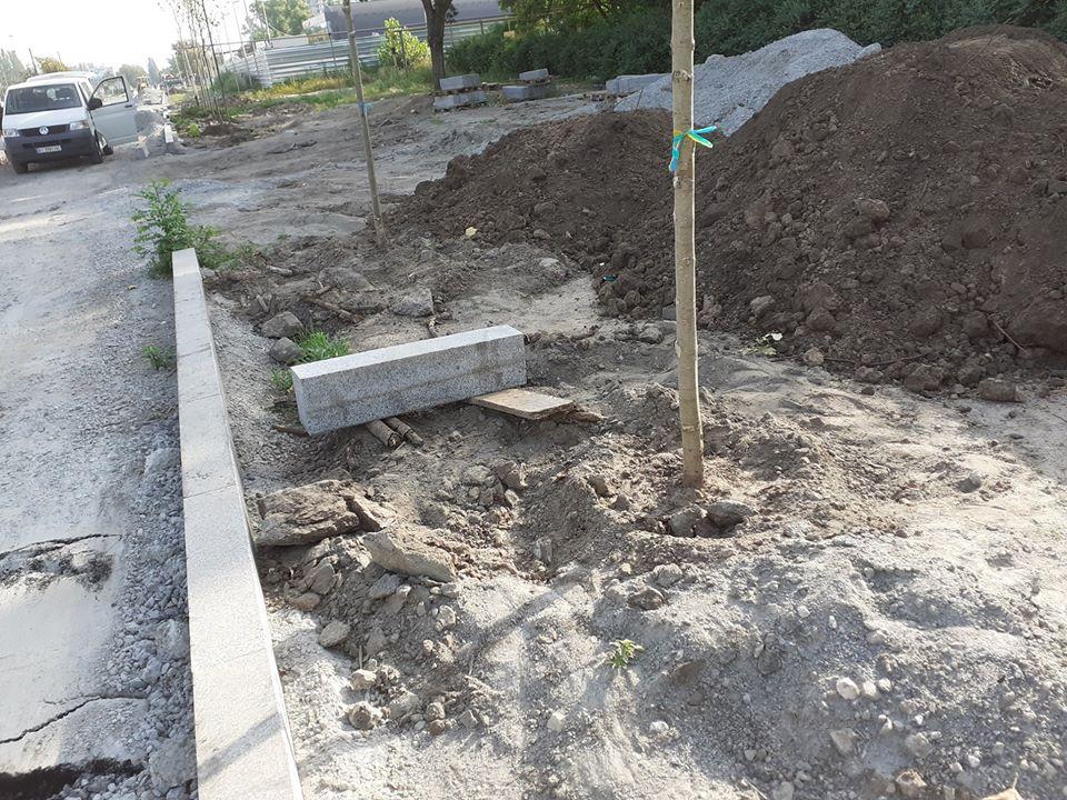 Так высаживают деревья на Набережной. Молодые саженцы на Набережной Победы в Днепре обречены на усыхание?