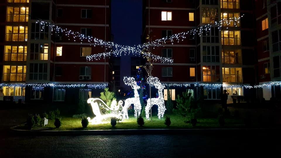 В Днепре во дворе многоэтажки на ж/м Левобережный-3 «поселились» олени