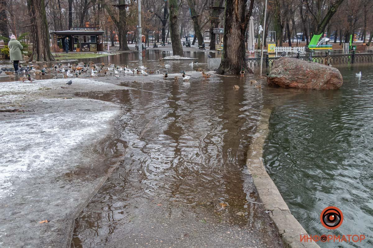 В Днепре затопило парк Глобы, утки плавают по тротуару