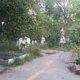 Город без окраин: уютные места для прогулок. Как изменился «Амурский парк»