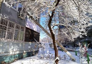 В Днепре жителям в окно упал уличный фонарь