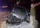 Полиция Днепропетровщины устанавливает обстоятельства ДТП с 5 пострадавшими