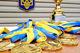 Более 1,5 тысячи спортсменов Днепропетровщины вошли в состав украинских сборных