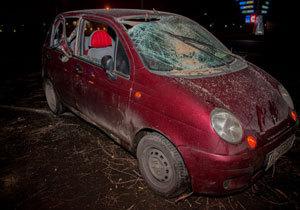 На Донецком шоссе автомобиль въехал в упавшее на дорогу дерево