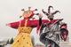 В Днепре отметят Масленицу-2021 с «Сердючкой» и сладкой ватой: где будет праздник