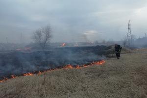 За сутки на Днепропетровщине произошло 39 пожаров из-за выжигания сухой травы