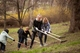 Весенняя уборка: сотрудники исполнительных органов горсовета очистили территорию парка Глобы