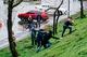 Новая зеленая зона: на Сичеславской Набережной высадили 50 кленов