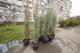 На улице Калиновой высадили 100 кустов можжевельника