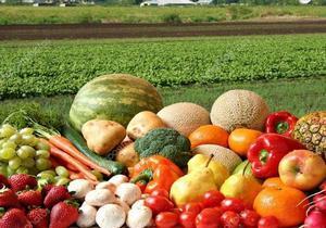 Овощи нового урожая бьют ценовые рекорды: что будет дальше
