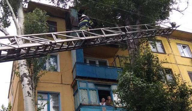 В Кривом Роге спасатели сняли мальчика с дерева