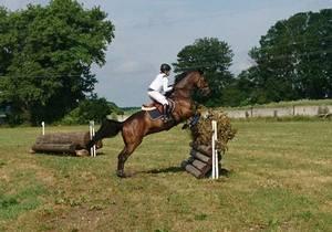 На Чемпионате Украины по конному спорту воспитанница днепровской школы олимпийского резерва завоевала три первых места