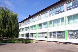 В Царичанке реконструируют опорную школу