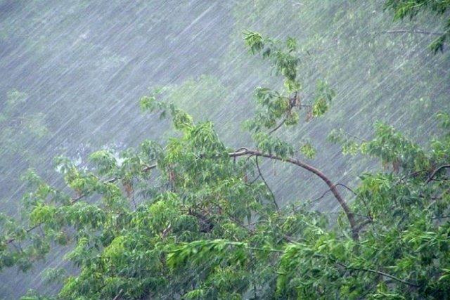 Июнь-2021 самый дождливый за всю историю наблюдений