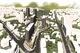 В центре Днепра за 205 млн построят коллектор, чтобы застроить Долгую балку