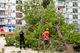 На жилмассиве Тополь-2 дерево упало на детскую площадку