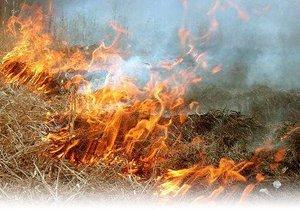 Из-за жары на Днепропетровщине объявили высокий класс пожарной опасности