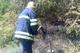 На Днепропетровщине огонь снова уничтожает экосистемы