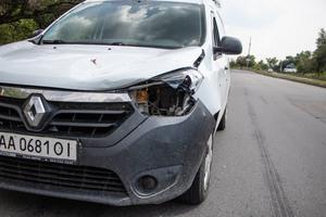 В Днепре мужчина на Renault сбил олененка