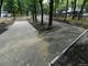 В Днепре начали реконструкцию парка Гагарина