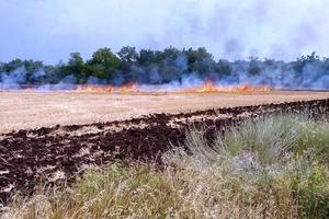 На Днепропетровщине пожарные ликвидировали возгорание стерни на поле