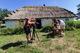 В 60 километрах от Днепра находится известный на всю область казацкий хутор