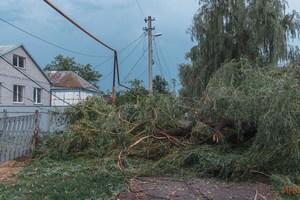 В Днепре в Балканском переулке ветер повалил деревья и электроопору: повреждена газовая труба