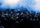 В Днепре на Монастырском острове стартовал  фестиваль электронной музыки «Гравитация»