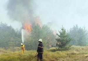 На Дніпропетровщині у Павлоградському районі ліквідують лісову пожежу (оновлено)