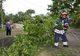 В Днепре спасатели убирали поваленные деревья