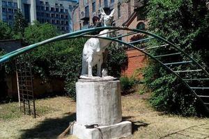 У статуи кенгуру в Днепре есть свой «смотритель»