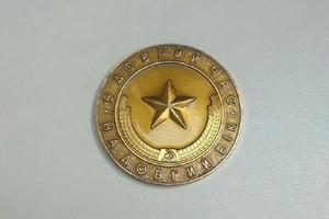 В музей Днепра горожане передали редкую медаль