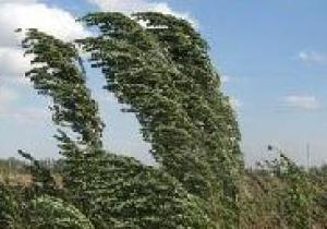 Днепрян призывают к осмотрительности в связи с усилением ветра