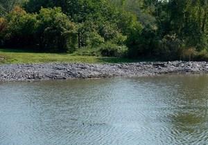 Расчистили уже более 11 км реки Мокрая Сура в Днепровском районе