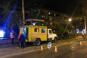 В Днепре на проспекте Дмитрия Яворницкого упало дерево и заблокировало движение трамваев